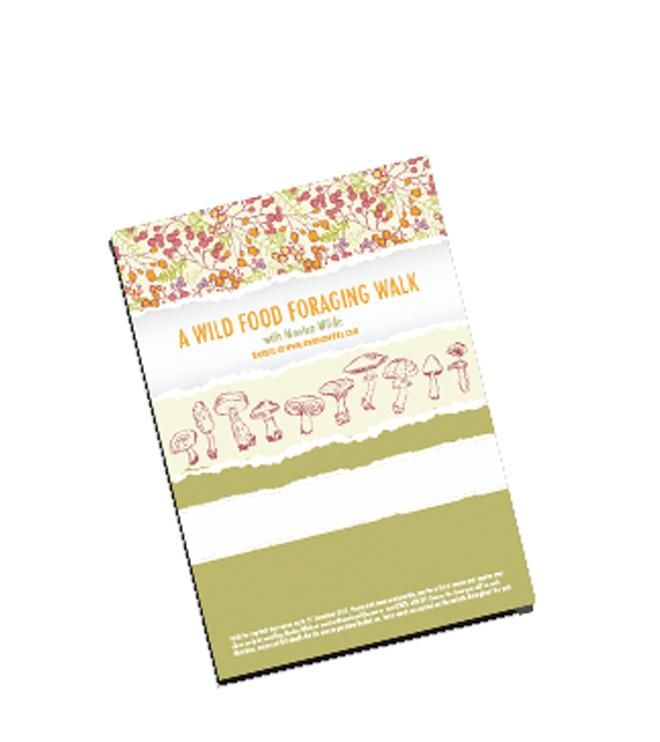 shop-gift-certificate