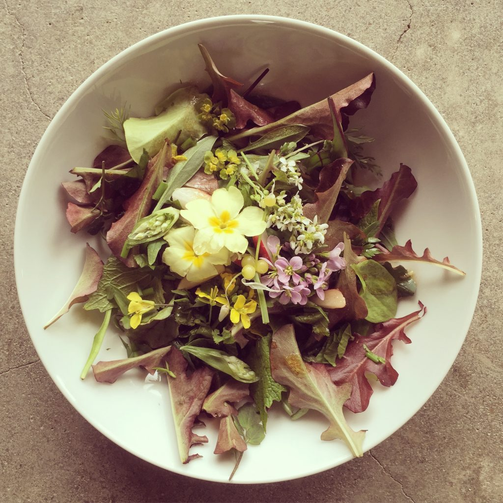 A wild and homegrown Spring salad