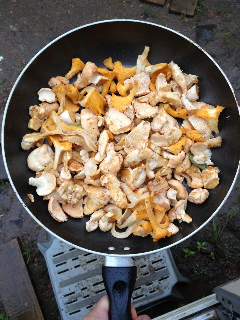 Wild mushrooms