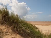 beach-dunes-200px