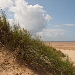 dunes-coast